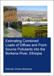 Estimating Combined Loads of Diffuse and Point-Source Pollutants Into the Borkena River, Ethiopia