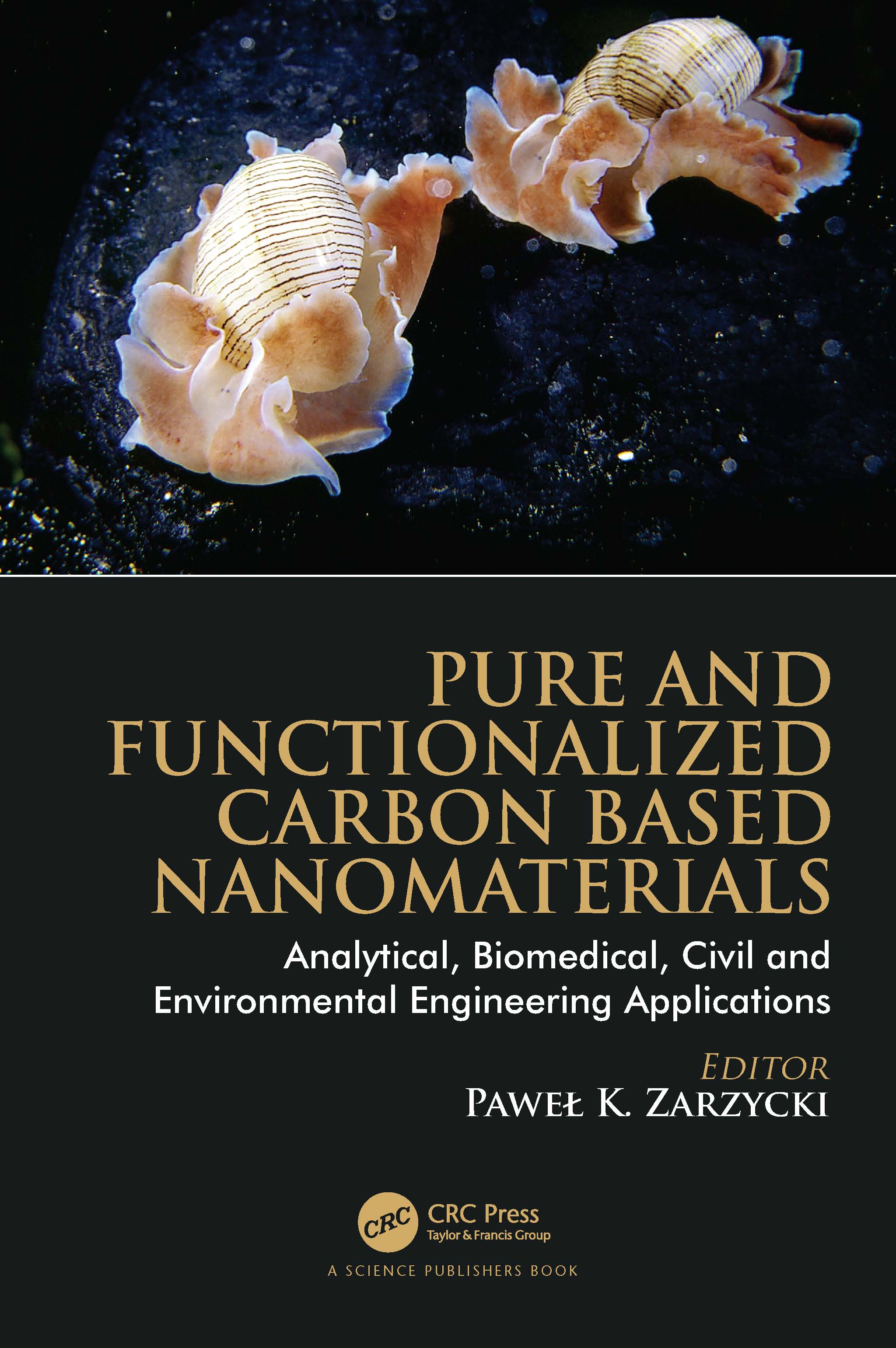 Pure and Functionalized Carbon Based Nanomaterials - 1st Edition book cover