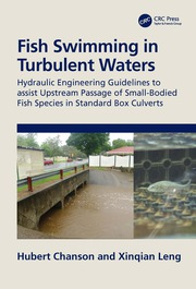 Fish Swimming in Turbulent Waters - 1st Edition book cover