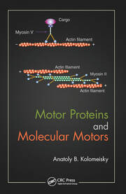Motor Proteins and Molecular Motors - 1st Edition book cover