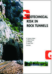 Geotechnical Risk in Rock Tunnels: Selected Papers from a Course on Geotechnical Risk in Rock Tunnels, Aveiro, Portugal, 16–17 April 2004