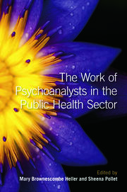 The Work of Psychoanalysts in the Public Health Sector - 1st Edition book cover