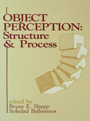 Object Perception - 1st Edition book cover