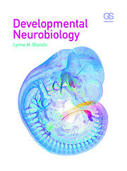 Developmental Neurobiology - 1st Edition book cover