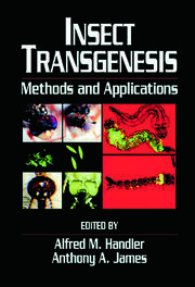 Insect Transgenesis: Methods and Applications