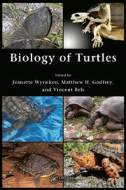 Biology of Turtles: From Structures to Strategies of Life