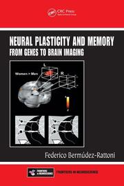 Neural Plasticity and Memory: From Genes to Brain Imaging