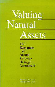 Valuing Natural Assets - 1st Edition book cover