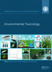Engineering Tools for Environmental Risk Management - 1st Edition book cover