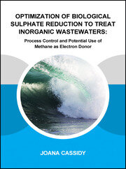 Optimization of Biological Sulphate Reduction to Treat Inorganic Wastewaters: Process Control and Potential Use of Methane as Electron Donor