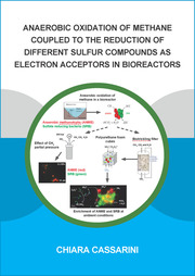 Anaerobic Oxidation of Methane Coupled to the Reduction of Different Sulfur Compounds as Electron Acceptors in Bioreactors
