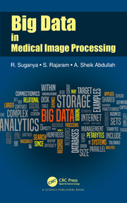 Big Data in Medical Image Processing - 1st Edition book cover