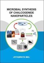 Microbial Synthesis of Chalcogenide Nanoparticles: Combining Bioremediation and Biorecovery of Chalcogen in the Form of Chalcogenide Nanoparticles