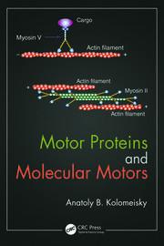 Motor Proteins and Molecular Motors