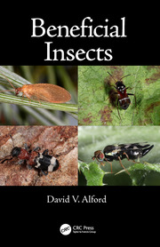 Insects Insect