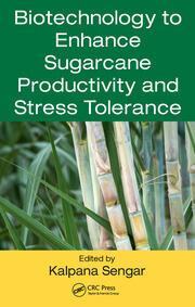 Biotechnology to Enhance Sugarcane Productivity and Stress Tolerance
