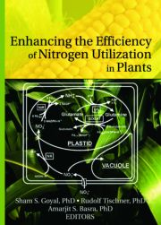 Enhancing the Efficiency of Nitrogen Utilization in Plants - 1st Edition book cover