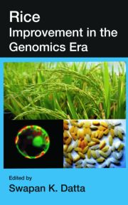 Rice Improvement in the Genomics Era