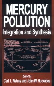 Mercury Pollution Integration and Synthesis