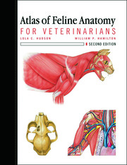 Atlas of Feline Anatomy For Veterinarians - 2nd Edition book cover