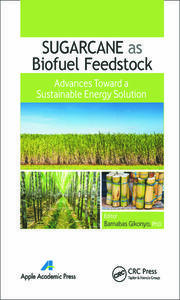 Sugarcane as Biofuel Feedstock: Advances Toward a Sustainable Energy Solution