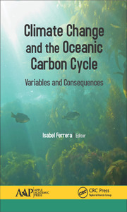 Climate Change and the Oceanic Carbon Cycle - 1st Edition book cover