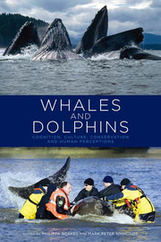 Whales and Dolphins - 1st Edition book cover