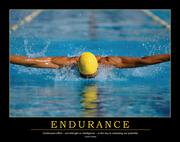 Endurance Poster - 1st Edition book cover