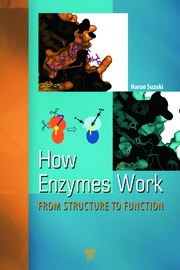 How Enzymes Work: From Structure to Function