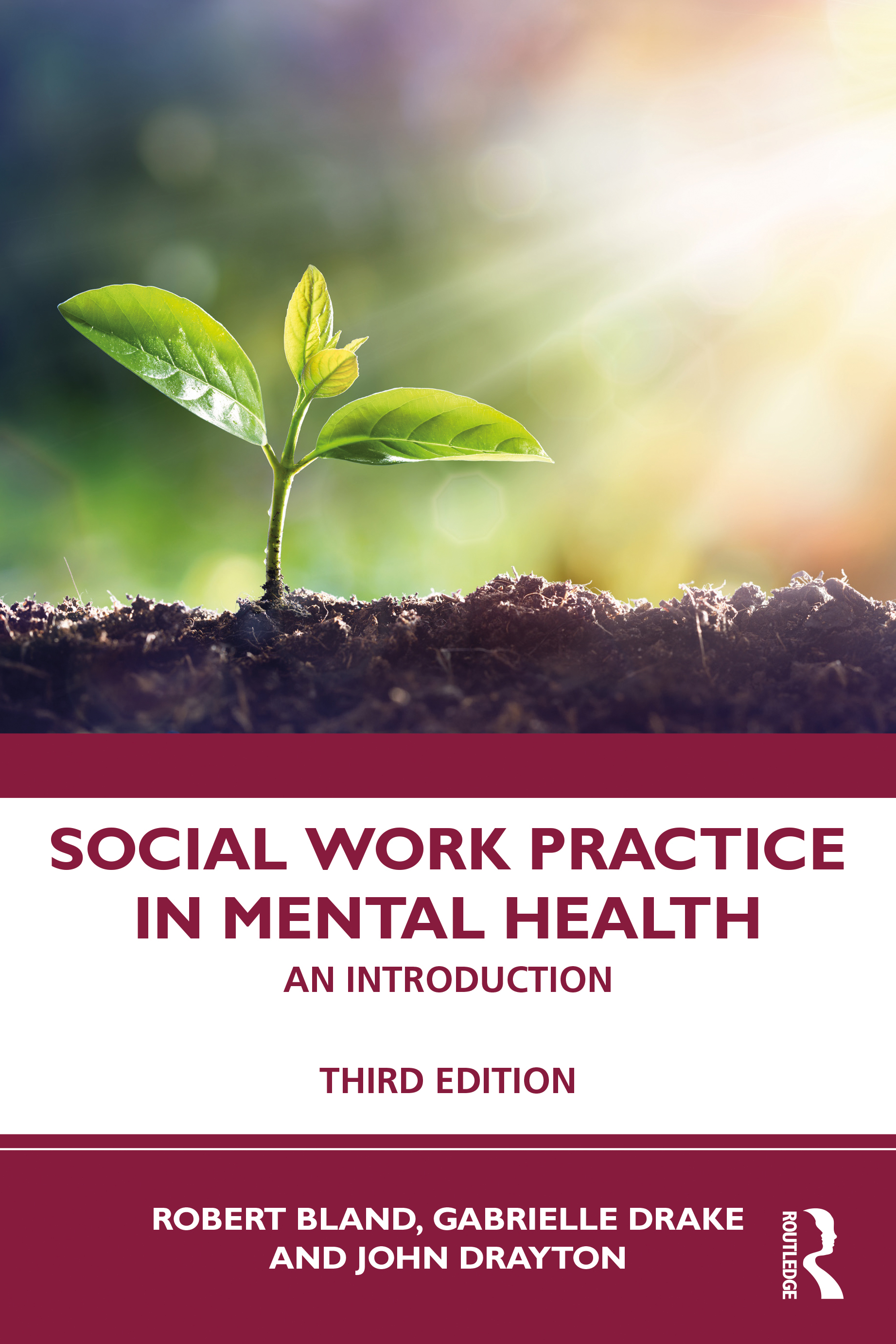 Social Work Practice in Mental Health: An Introduction - 3rd Edition -